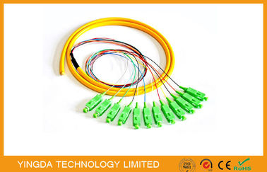China Media Converter 12 Fibers SC APC Fiber Optic Pigtail With Low Insertion Loss supplier